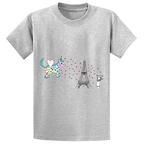 Snowl Rainbow The Unicorn In Paris Unisex Crew Neck Short Sleeve T Shirt Grey