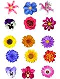 15 Mixed Summer Flower Edible Wafer Paper Cake Toppers Decorations