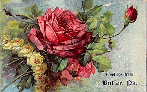 Butler, Pennsylvania Postcard