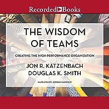 The Wisdom of Teams: Creating the High-Performance Organization Audiobook by Jon R. Katzenbach, Douglas K. Smith Narrated by Jordan Harrold