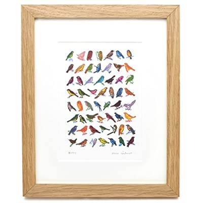 Garden Birds by John Dilnot (Framed Print)