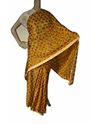Beautiful RUDA Designer Phulkari Embroidered Saree-JS1104