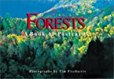 Forests: A Book of Postcards