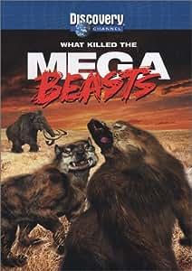 What Killed the Mega-Beasts