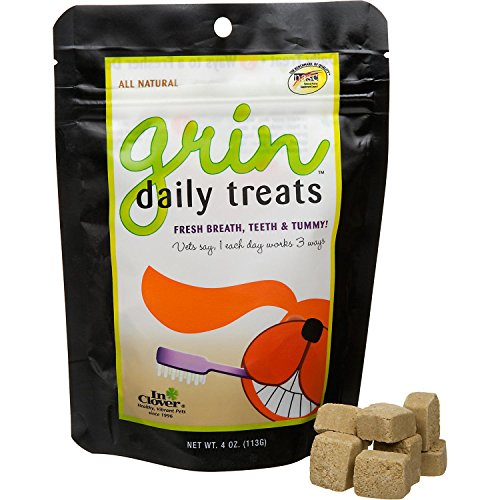 In-Clover-Grin-for-Dental-Health-Soft-Chews-for-Dogs
