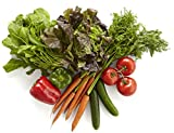 Salad Bundle