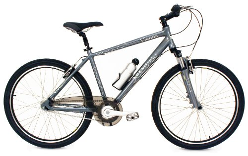 Verso Vienna 8-Speed Commuter Bike (Metro Grey, 17.5-Inch)