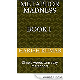 Metaphor Madness: Simple words turn sexy metaphors (English Edition)