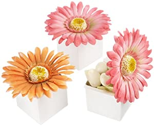 kateaspen Daisy Delight Gerbera Daisy Favor Box, Bright Orange (Pack of 24)