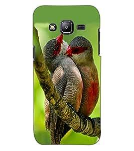 ColourCraft Love Birds Design Back Case Cover for SAMSUNG GALAXY J2 DUOS