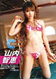 山内智恵 RQ360 [DVD]