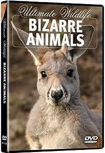 Ultimate Wildlife: Bizarre Animals