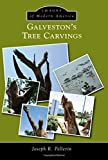 img - for Galvestons Tree Carvings (Images of Modern America) by Joseph R. Pellerin (2015-02-16) book / textbook / text book