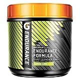 Gatorade Endurance Formula Thirst Quencher Sport Drink Powder - 32oz. Canister