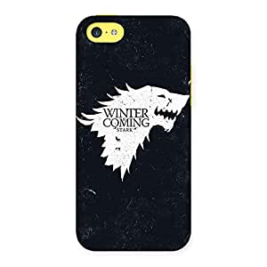 Delighted Premier Winter Comes Multicolor Back Case Cover for iPhone 5C