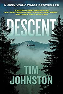 Descent: A Novel by Tim Johnston ebook deal