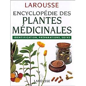Culture plantes médicinales