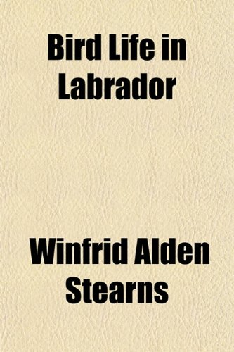 Bird Life in Labrador