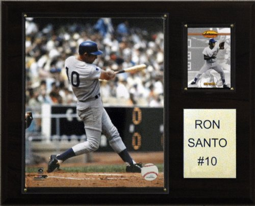 MLB Ron Santo Chicago Cubs Player Plaque at Amazon.com