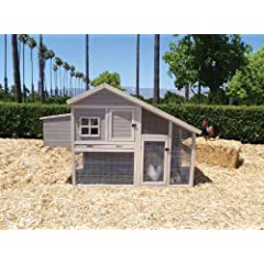 Precision Extreme Cape Cod Chicken Coop with Nesting Box and Roosting Bar by Precision Pet