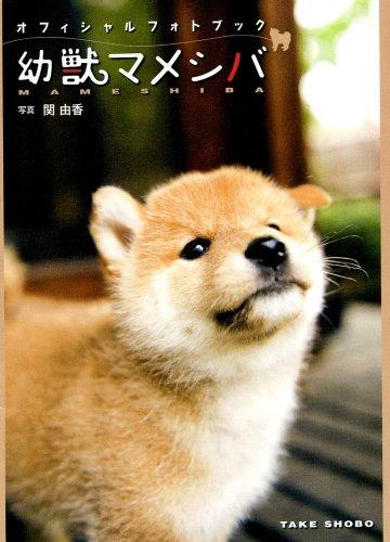 幼獣マメシバオフィシャルフォトブック