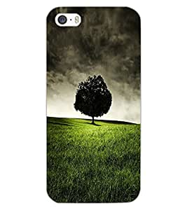 APPLE IPHONE 5S TREE Back Cover by PRINTSWAG