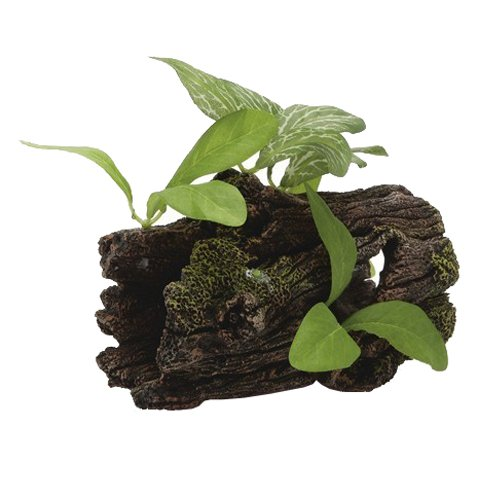 beeztees d coration pour aquarium tronc d arbre avec plantes pour aquariophilie 14 x 7 x 15 cm. Black Bedroom Furniture Sets. Home Design Ideas