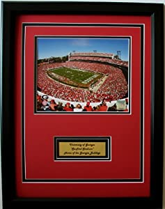 NCAA Georgia Bulldogs Sanford Stadium Framed Portrait Photo with Nameplate by CGI Sports Memories