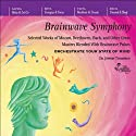 Brainwave Symphony  by Jeffrey Thompson