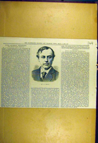 1878 Portrait Molloy Old Print Sporting Dramatic News