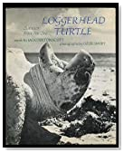 Loggerhead Turtle: Survivor from the Sea