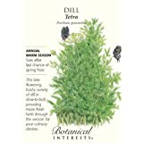 Tetra Dill Herb Seeds - 3 grams - NEW!
