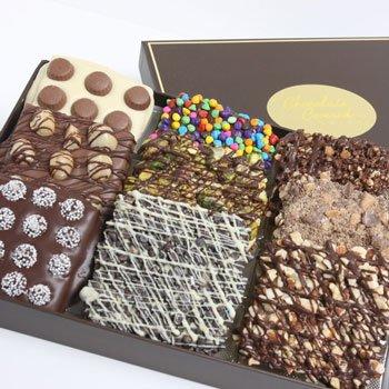 Ultimate Belgian Chocolate Covered Graham Crackers - 9 piece (Chocolate Graham Crackers compare prices)