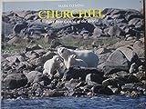img - for Churchill: Polar Bear Capital of the World book / textbook / text book