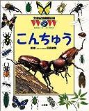 こんちゅう (21世紀幼稚園百科)