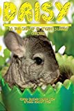 img - for Daisy: The True Story of an Amazing 3 Legged Chinchilla Paperback February 14, 2014 book / textbook / text book