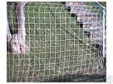 PLANT SUPPORT NETTING (2M X 2M)