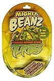 Mighty Beanz Teenage  Mutant Ninja Turtles 5-Pack
