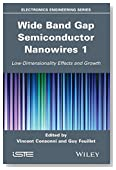 Wide Band Gap Semiconductor Nanowires for Optical Devices: Low-Dimensionality Related Effects and Growth (Electronics Engineering)