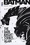 Batman : The Dark Knight Strikes Again (DVD inclus)