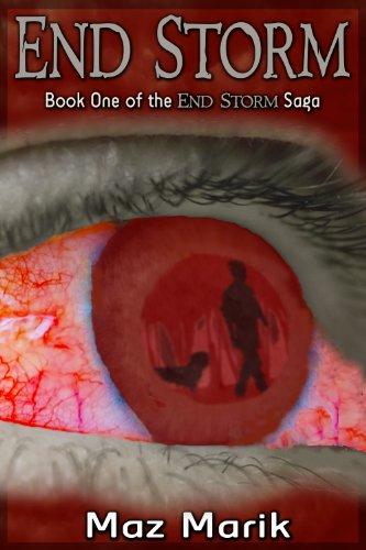 End Storm The Saga ebook