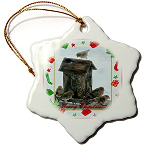 3dRose orn_27388_1 Finch Family Merry Christmas-Snowflake Ornament, Porcelain, 3-Inch