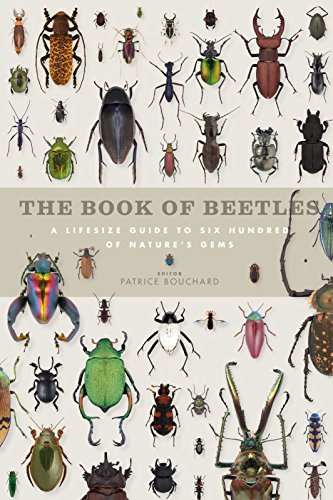 the-book-of-beetles-a-life-size-guide-to-six-hundred-of-natures-gems-book-of-series