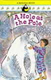 A Hole at the Pole (Banana Books) (0434968013) by D'Lacey, Chris
