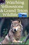Watching Yellowstone And Grand Teton Wildlife: The Best Places to Look From Roads and Trails