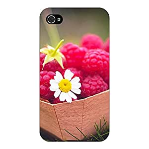 Jugaaduu Berry Love Back Cover Case For Apple iPhone 4