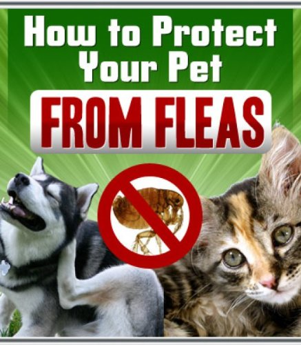 The Definitive Guide To Flea Treatment and Prevention: How To Eradicate Fleas From Your Home and Protect Your Pet Once And For All
