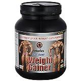 Ankerite X-C-Lent Weight Gainer (Chocolate) - 500 G