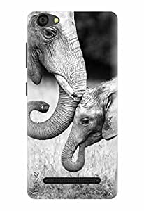 Noise Designer Printed Case / Cover for LYF WIND 6 / Nature / Elephant Design