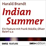 Indian Summer   Harald Brandt